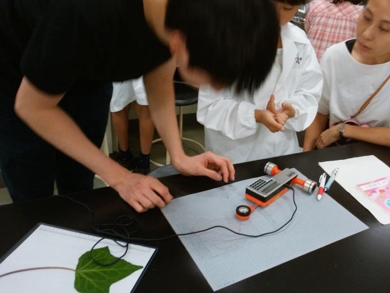 葉っぱの面積を専用の機械で測って比べてみる。