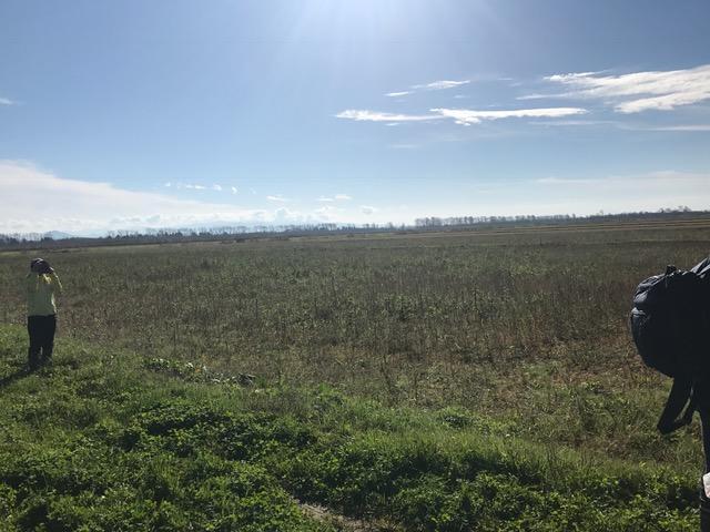 広大な干拓地の八郎潟。
