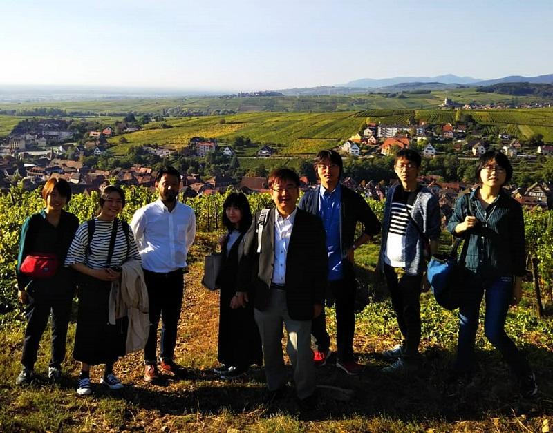 ワイン畑の見える丘から