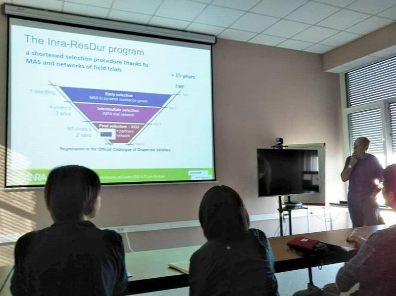 品種改良のプロジェクトに関する長期的な枠組みについて