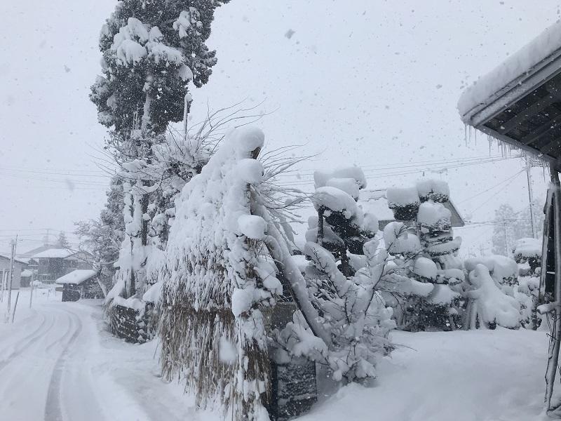 道から見たカザライ(近景)