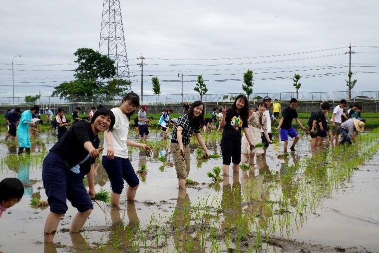 2019年6月15日キャリア教育講座の合宿で名城大学附属農場にて開催された田植えに参加する本学留学生