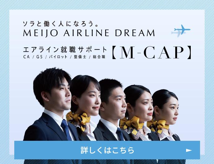 MEIJO AIRLINE DREAM