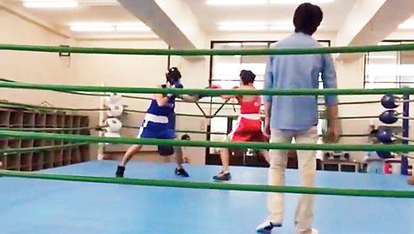 [体育会]ボクシング部