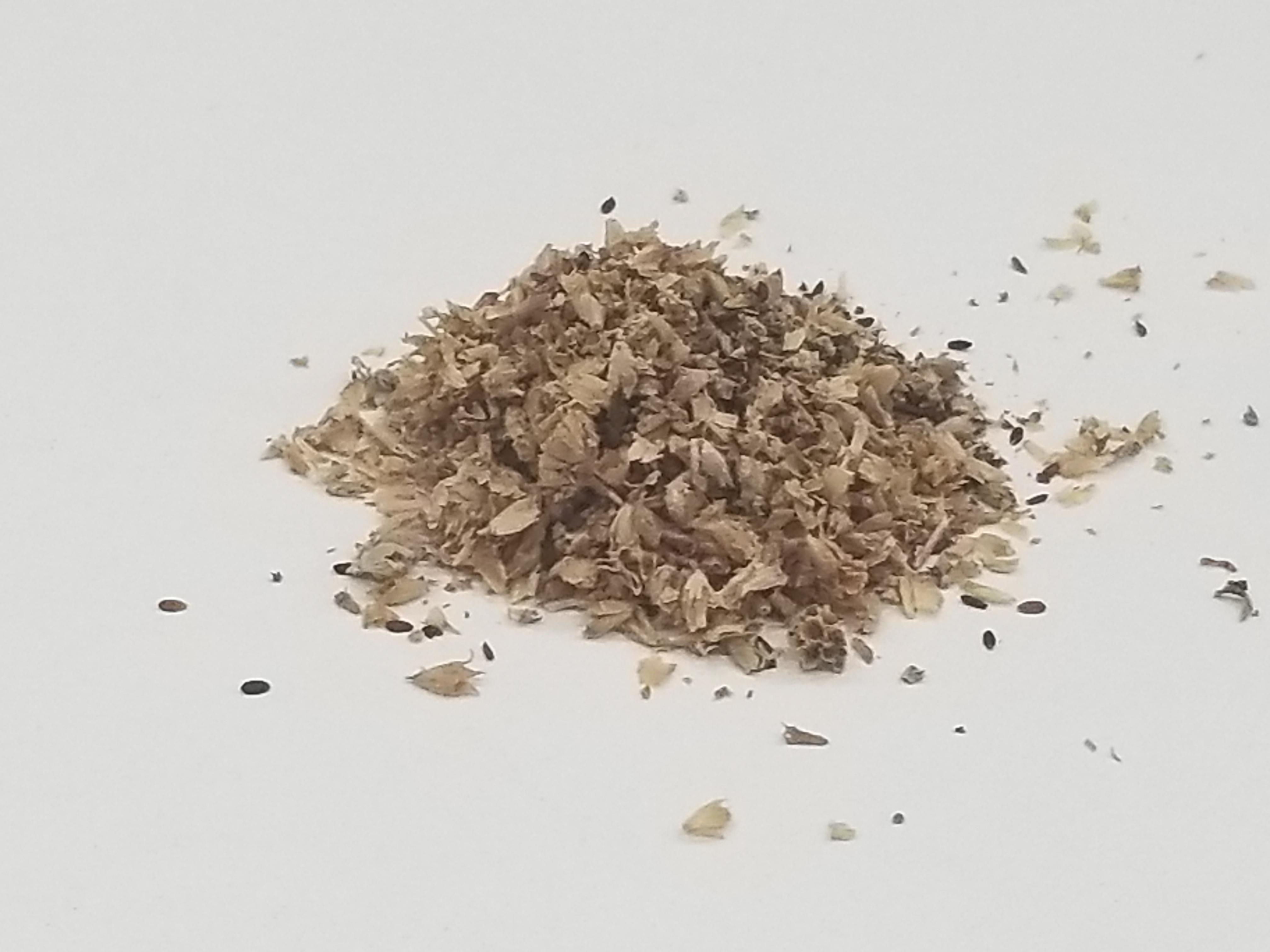 荊芥(けいがい)