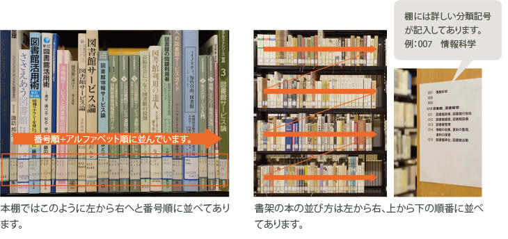 本棚内での並び方