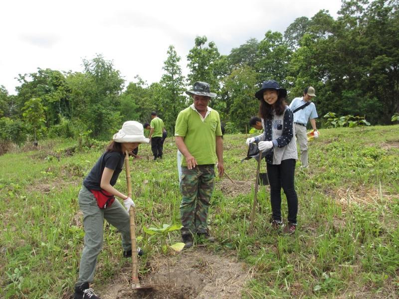 チーク材を植林する学生ら