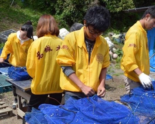 漁業ボランテイアを行う参加者