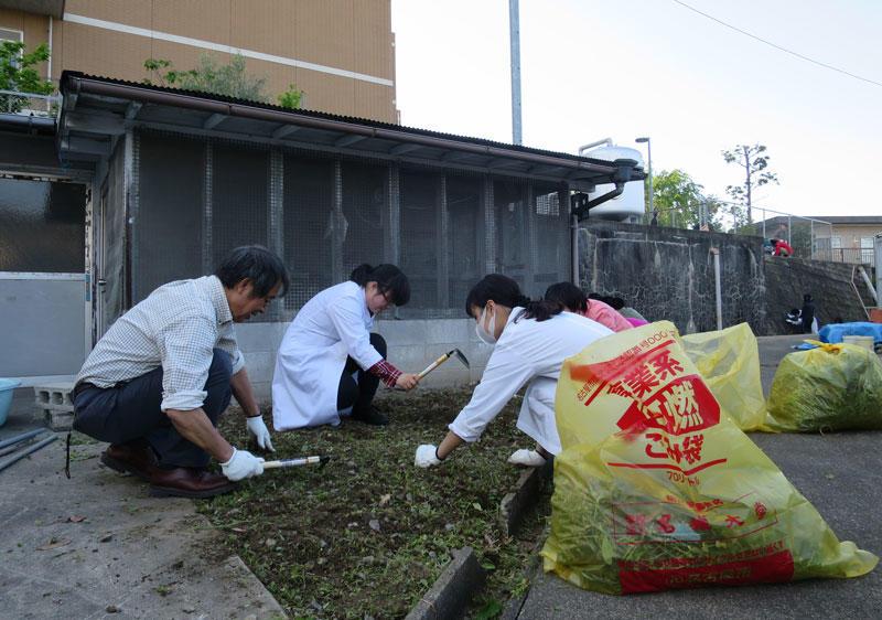 和気あいあいで草を刈る教員と学生