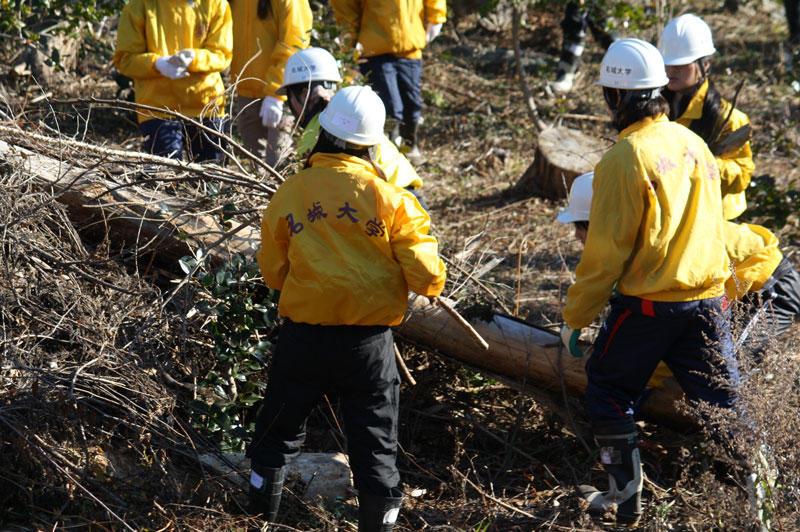 ツバキ林の整備に励む学生たち。重い丸太の撤去は結構な重労働でした。