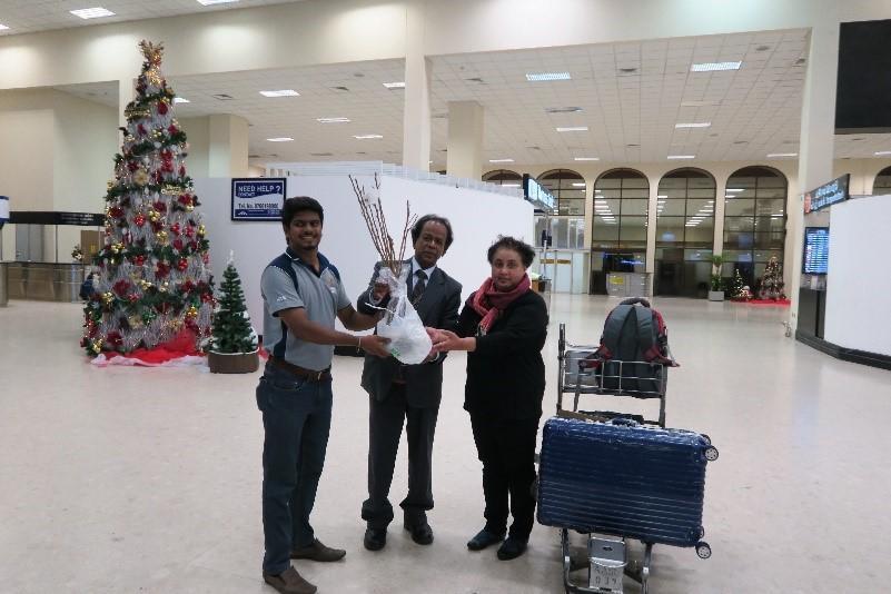 2017年12月25日、スリランカ空港でウバ・ウェッラッサ大学の関係者に苗木を手渡すクマーラ教授(中)