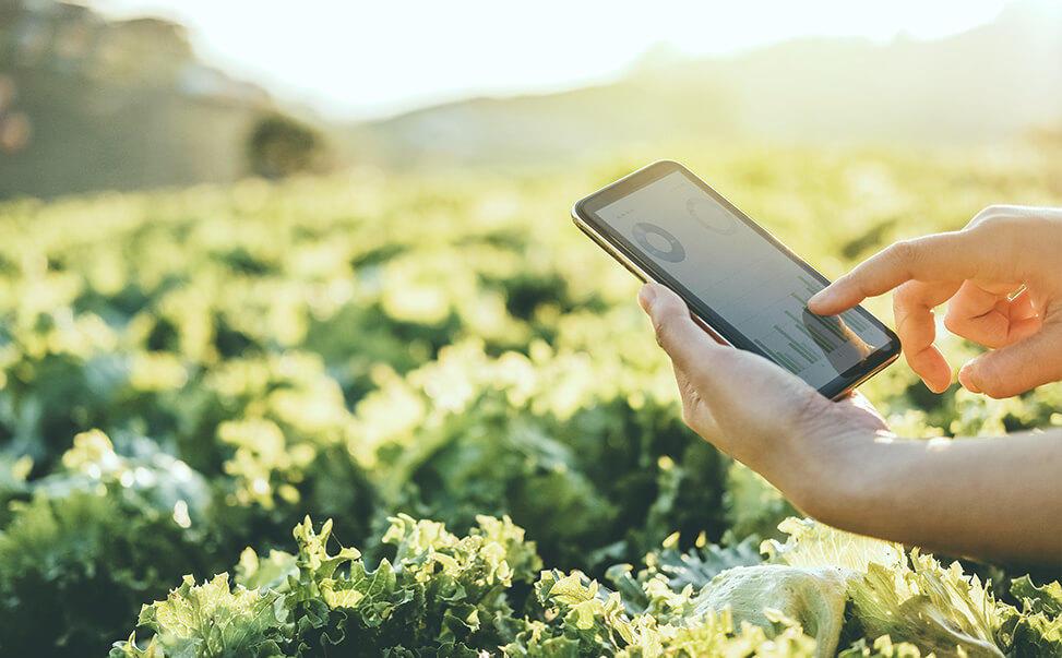 地域の課題を解決するために必要なアプローチとは/ GAP基準の農業で食と労働の安全を守る