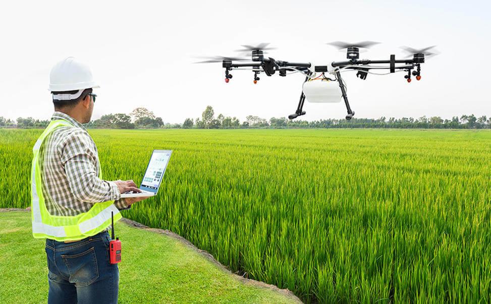現代農業が抱えるジレンマと3つの問題